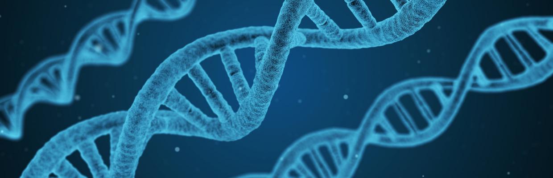 Medical Biotechnology and Molecular Medicine   Università degli